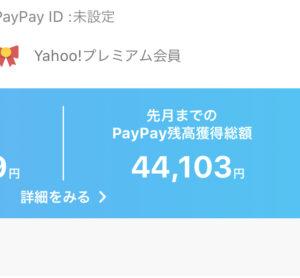 Paypay残高獲得総額